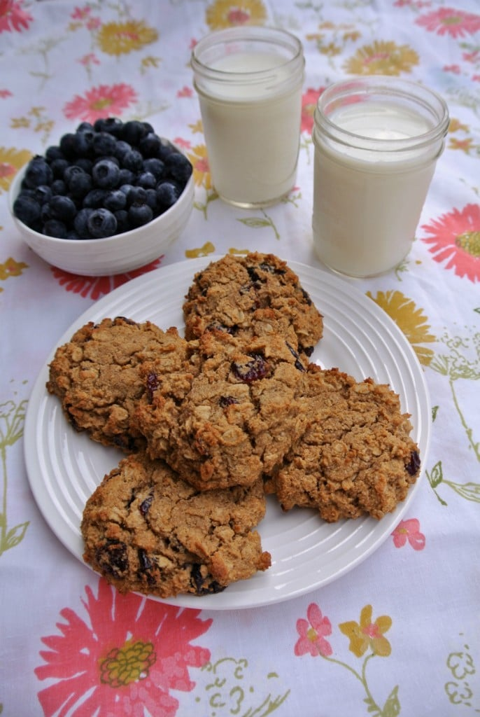 Cranberry-Oatmeal-Breakfast-Cookie-Gluten-Free-Refined-Sugar-Free--686x1024