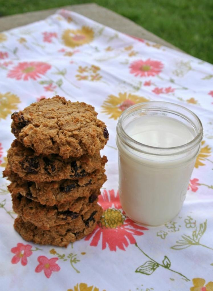 Cranberry-Oatmeal-Breakfast-Cookie-Recipe-Almond-Flour-Coconut-Flour--752x1024