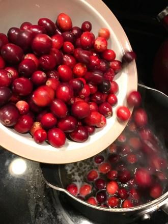 Cranberry Sauce 1