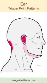 tags-ear