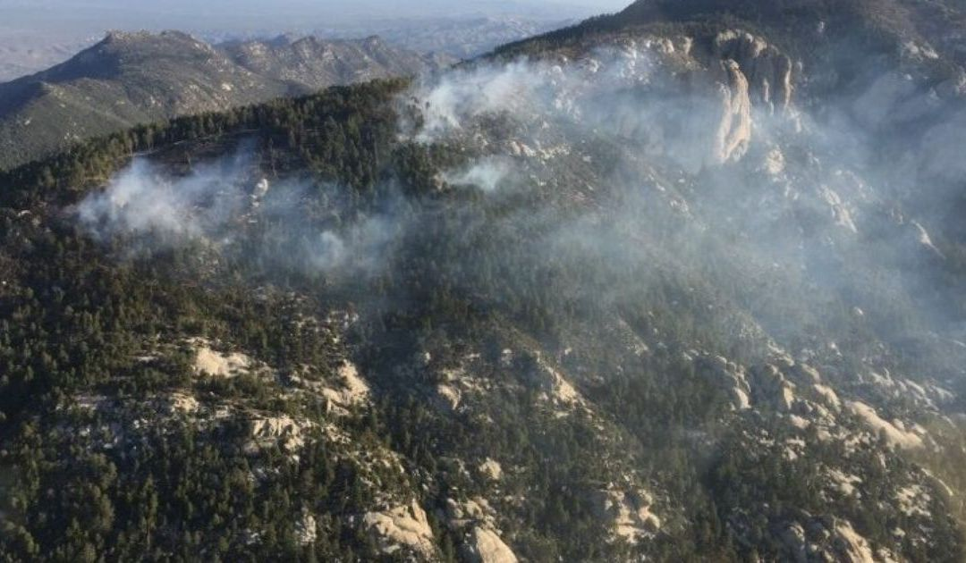 Shovel Fire at 10 acres on Mt. Lemmon, burning slowly