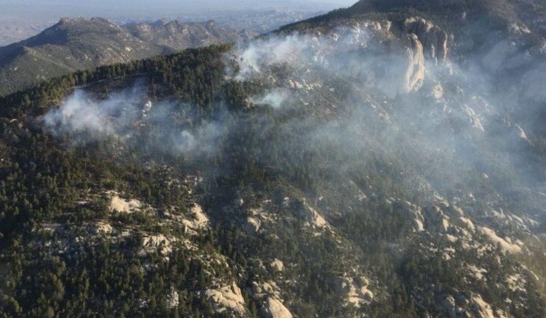 Shovel Fire at 10 acres on Mt. Lemmon, burning slowly