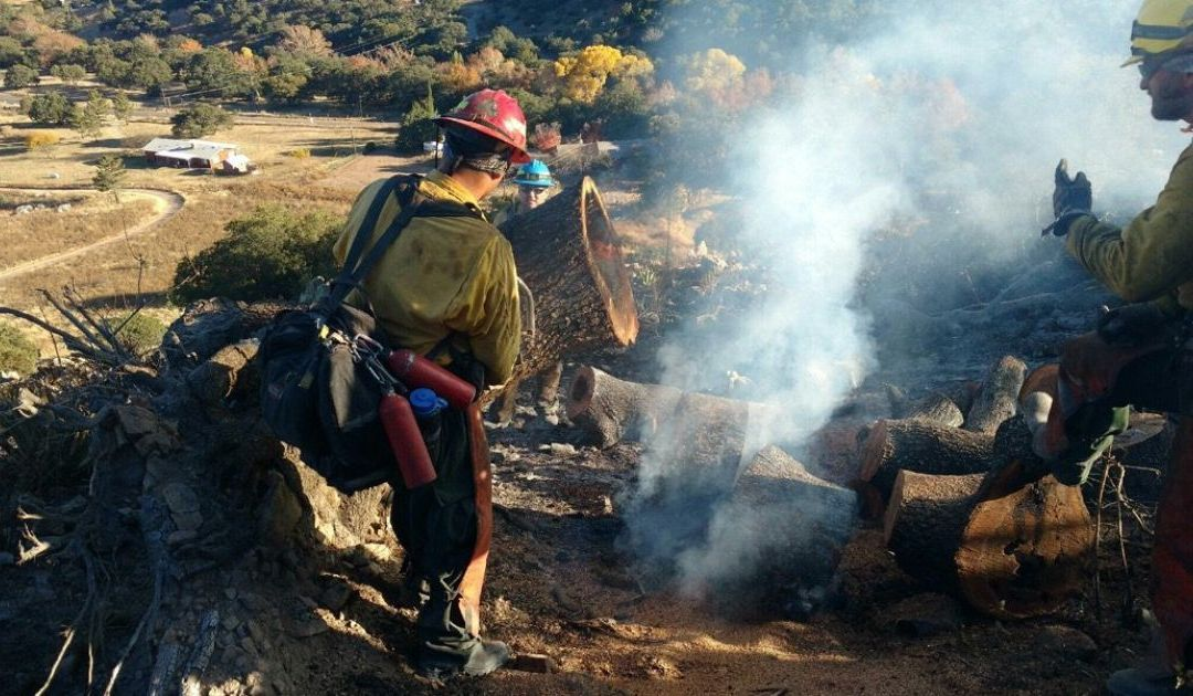 Off-duty agent suspected of starting Sawmill Fire