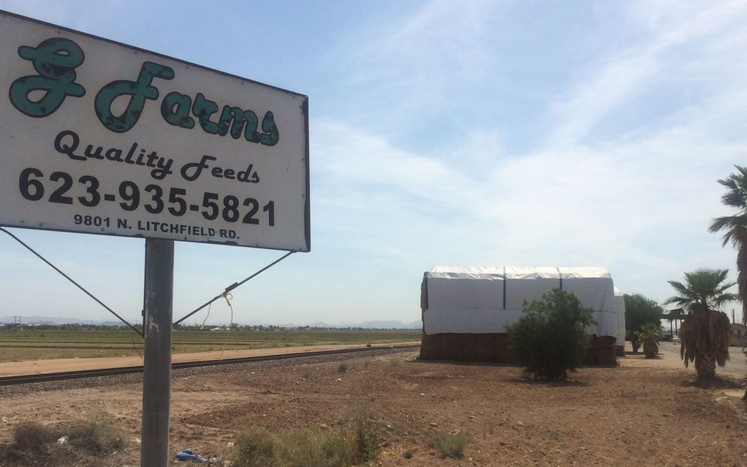 Living conditions for workers at Arizona farm 'simply inhumane'