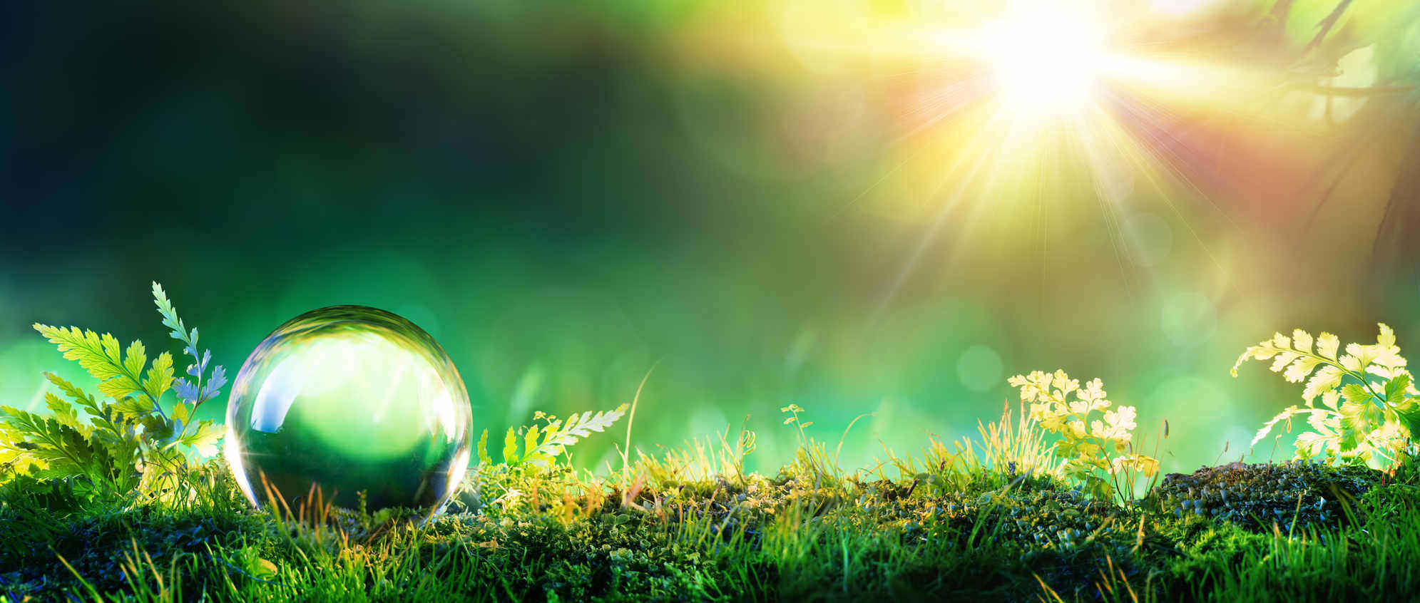 a crystal green globe lying on a moss bed with shining sun