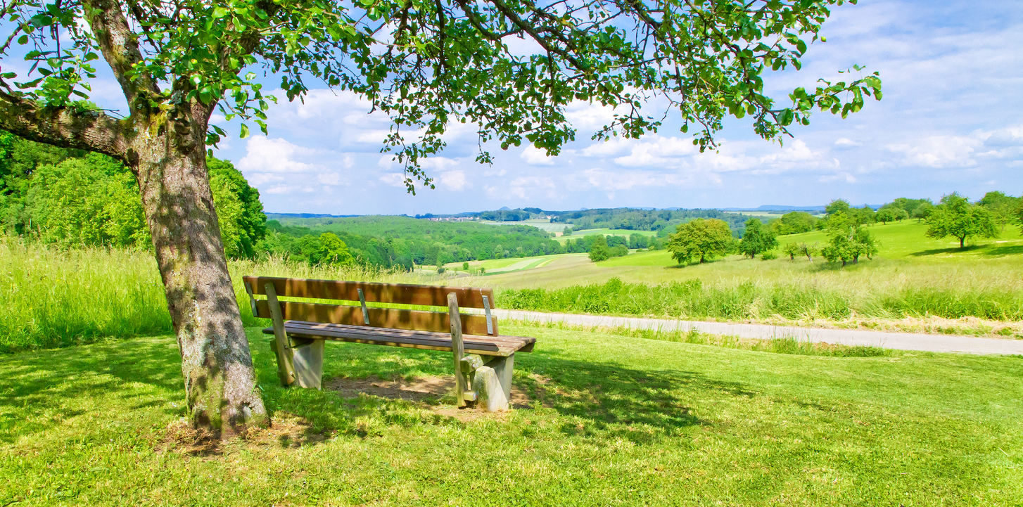 Am empty park bench looking out over a meadow and hills and trees in Baden Germany