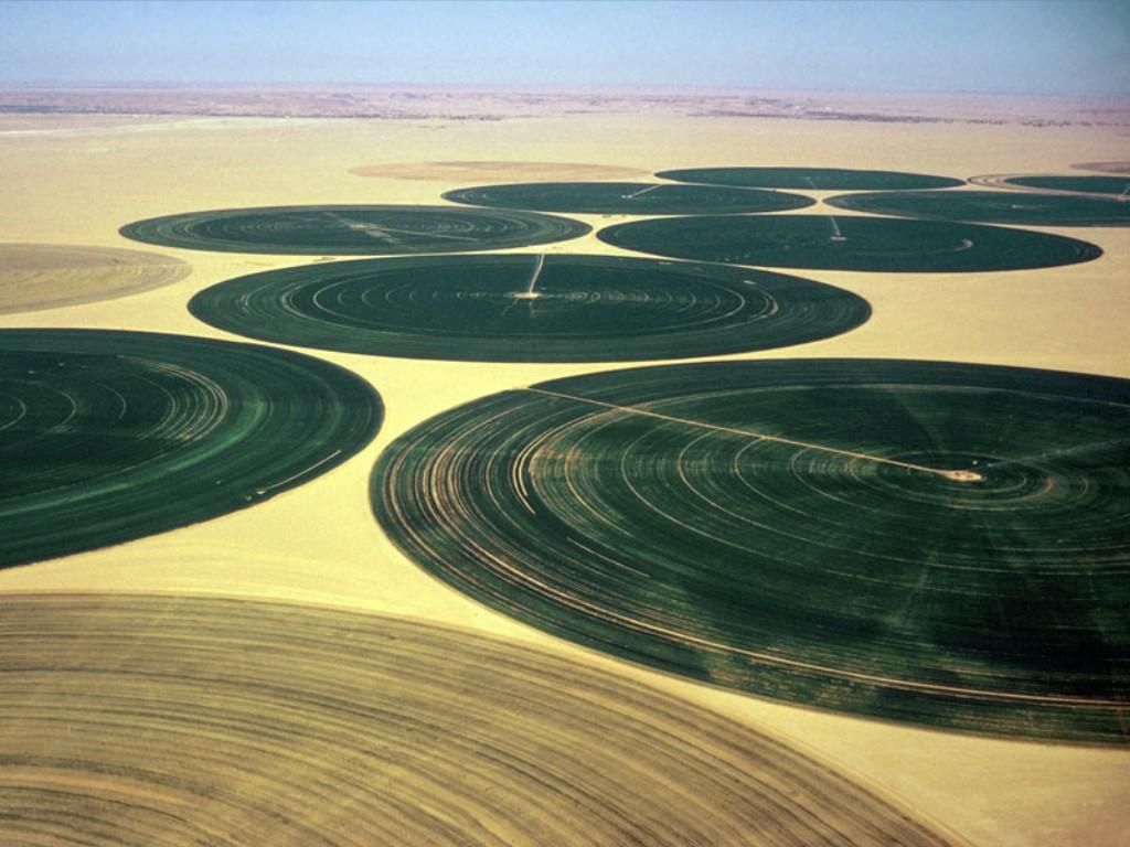 Uso eficiente de água e energia na irrigação