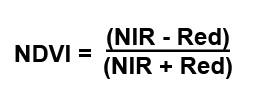 NDVI_Traditional_Formula