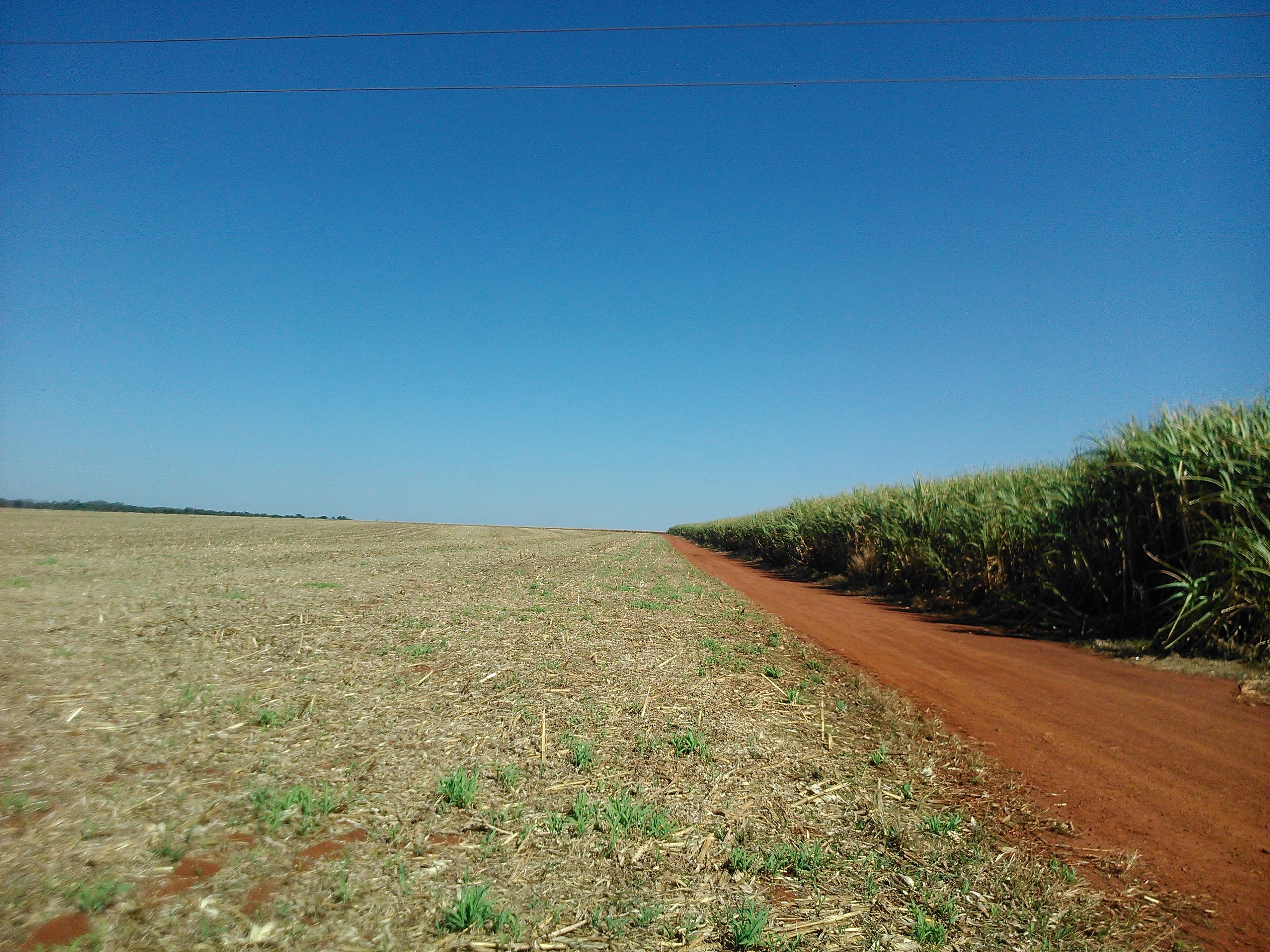 Brazilian Way of Farming