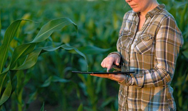 Você sabe a diferença entre Smart Farming e IoT?