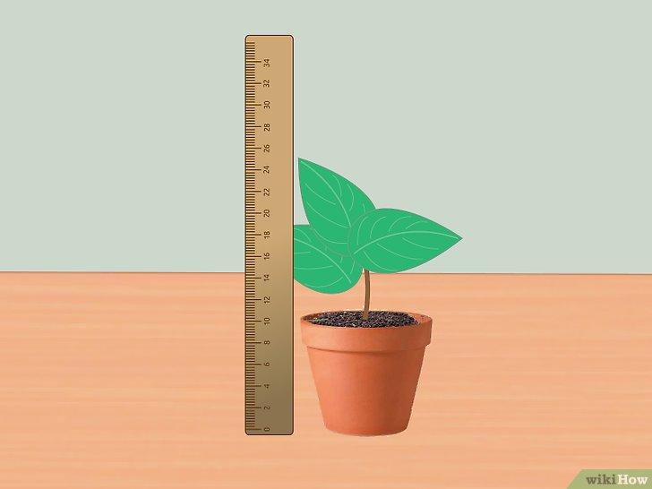 É Possível Monitorar Plantas em Tempo Real?