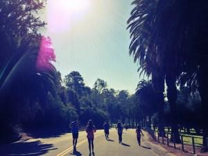 runners in sunlight