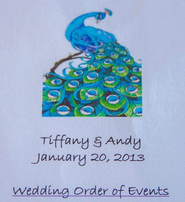Peacock theme wedding ideas. DIY Peacock wedding programs. #peacockthemewedding
