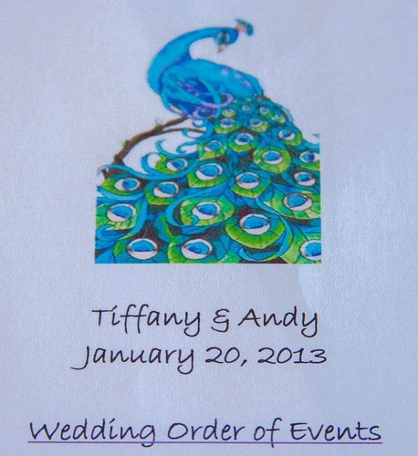 Peacock theme wedding ideas. DIY Peacock wedding programs. #peacockthemewedding