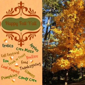 Fall Group Pinterest Board by Intelligentdomestications.com.Send request to join to shirley.wood97@gmail.com