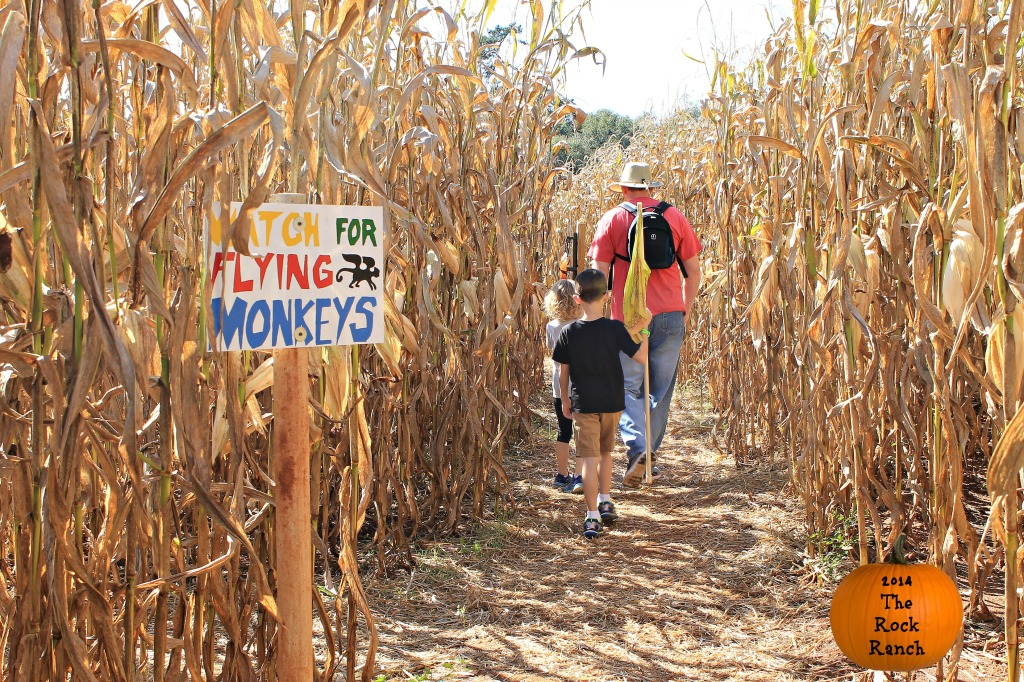Watch for Flying Monkeys. Wizard of Oz Theme Corn Maze at The Rock Ranch 2014