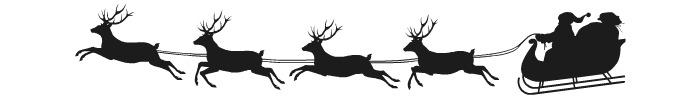 Santa flying the sleigh.intelligentdomestications.com