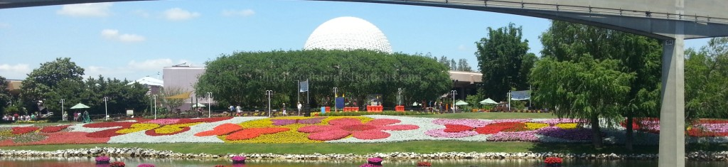 Flowers on the lake bank at the Epcot International Flower & Garden Festival 2014.intelligentdomestications.com
