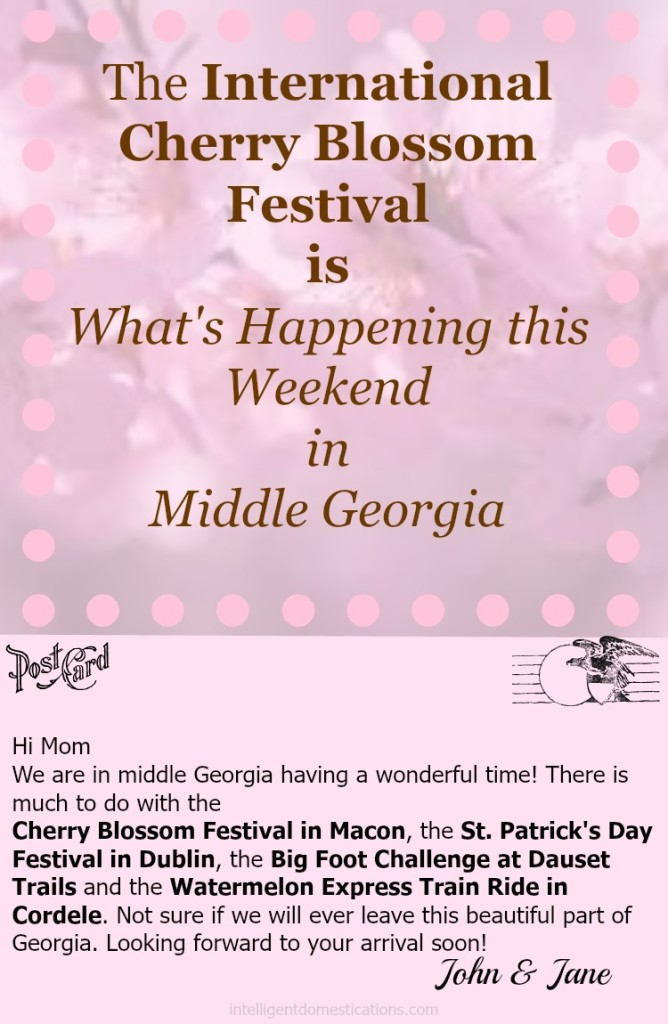 What's Happening in Middle Georgia March 21 thru 23 2015. It's Cherry Blossom Festival time! intelligentdomestications.com