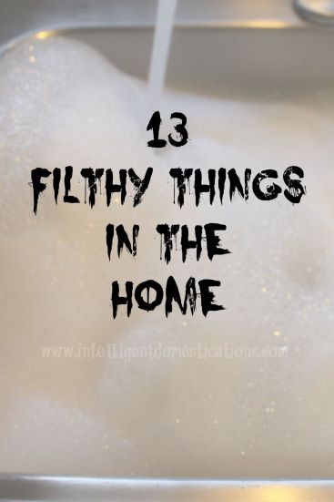 13 Filthy Things In The Home.Find all 13 at www.intelligentdomestications.com