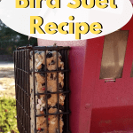 Easy 5 ingredient Bird Suet Recipe using peanut butter. Make this bird suet with the children, it's that easy. Freezes well. #birdsuet #birding #outdoorliving