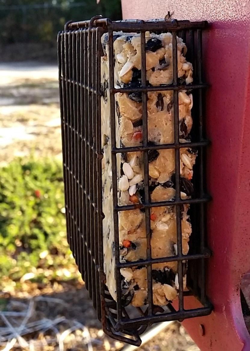 A bird suet cake in a bird feeder outside