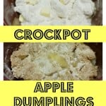 3 Ingredient Crockpot Apple Dumplings.Find the easy recipe at intelligentdomestications.com