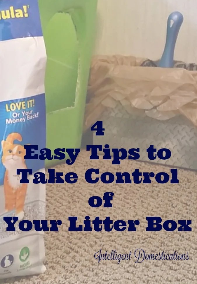 4 Easy Tips To Take Control of Your Litter Box.intelligentdomestications.com
