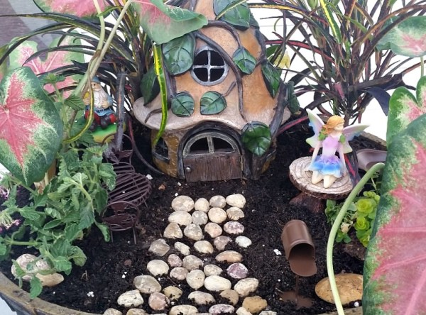 My Fairy Garden Tour 2016. Fairy Garden Ideas. Flowers to use in a flower garden. #fairygarden #gnomes #fairygardenideas