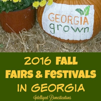 2016 Fall Fairs & Festivals In Georgia