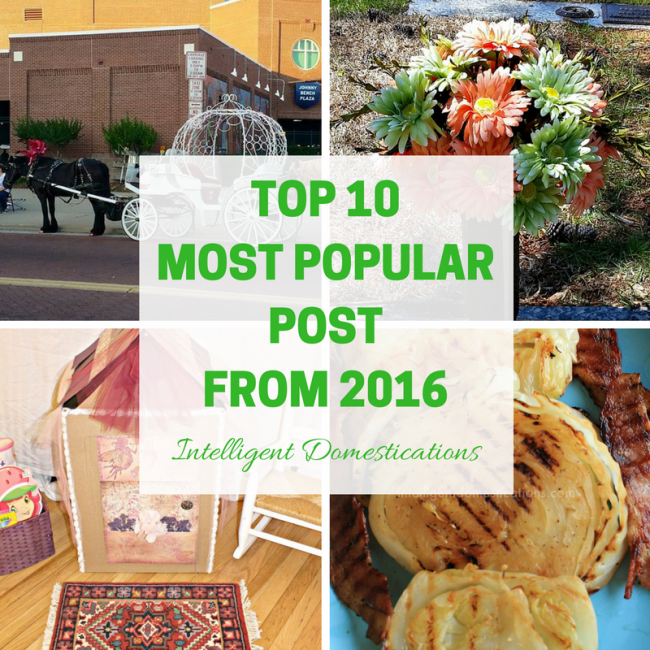 Top 10 Most Popular Posts from 2016 at intelligentdomestications.com