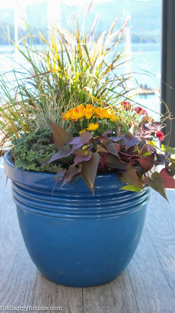 How-to-make-stunning-DIY-fall-planters-with-the-best-showy-fall-plants-at-thehappyhousie-FEATURED at the Merry Monday Link Up party