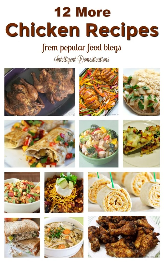 12 More Chicken Recipes from popular food blogs. Chicken recipes. Chicken for dinner ideas