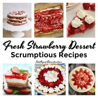 Strawberry Dessert Recipes (Merry Monday #199)
