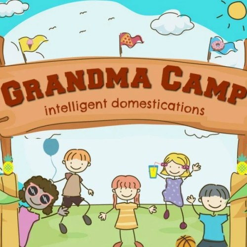 Grandma Camp Ideas for Summer Fun. Grandma Camp activities, crafts and day trips. #grandmacamp #cousincamp #summercampathome
