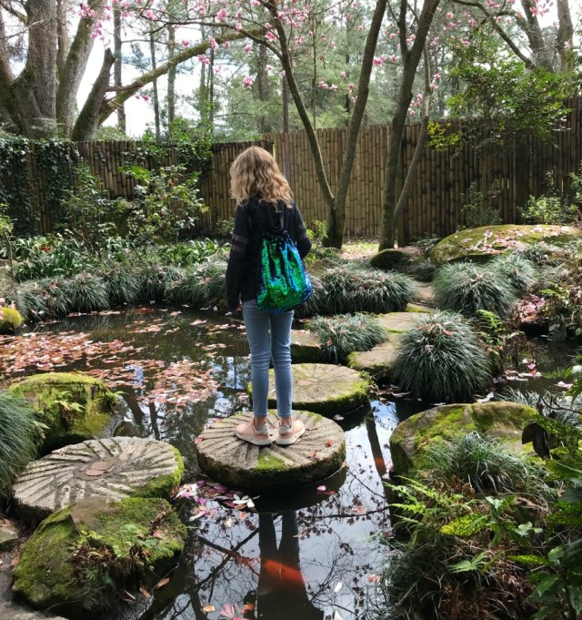 Massee Land Gardens at Fort Valley, Ga. Photos of the walking self guided tour. Camellia Gardens Tour. Camellia Gardens Tour. #visitgeorgia #walkingtour