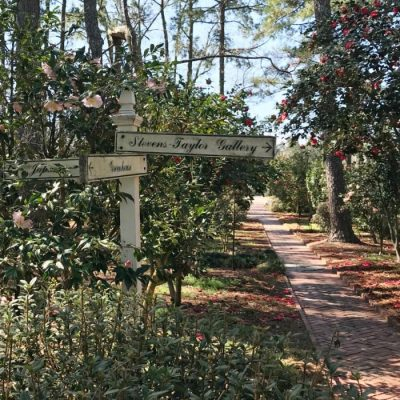 Tips For Visiting Massee Lane Gardens Fort Valley, Georgia