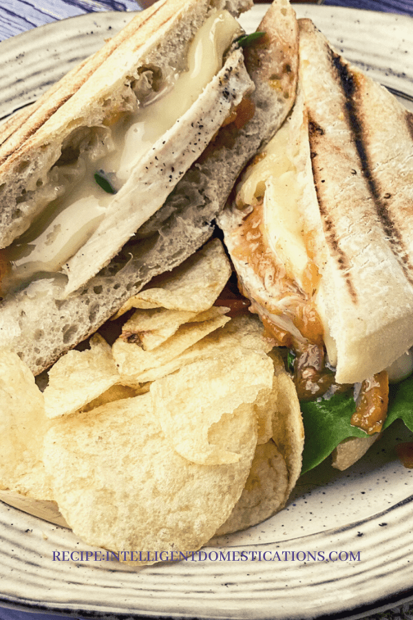 grilled chicken and melted white cheese sandwich on a plate with potato chips