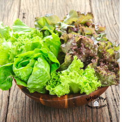 How To Grow Your Own Salad Greens Year Round