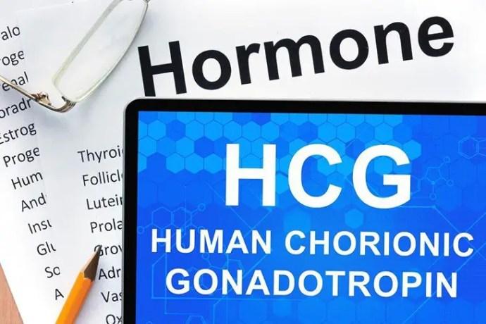 hCG hormone