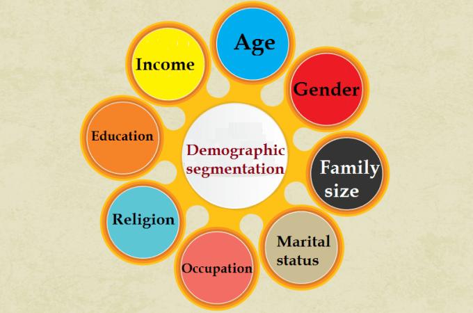 demographic segmentation infographic