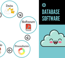 easy to use and simple database software programs