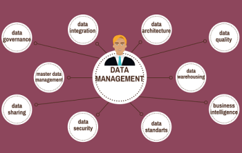 Data Management Best Practices and Strategies - featured image