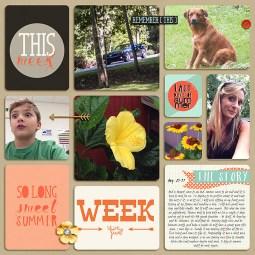 Week-35