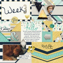 January PL Collection by Traci Reed