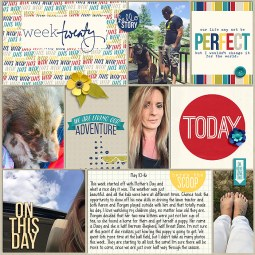 Pocket Life '15: May Collection by Traci Reed