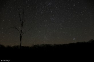 Night Sky © Andor (2)
