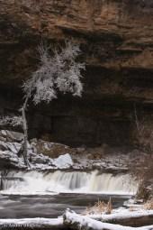 Willow River Falls © Andor (9)