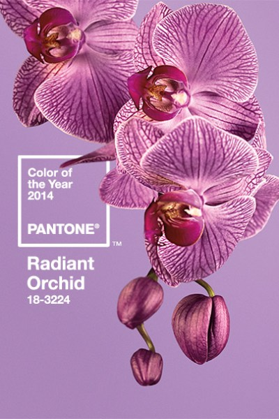 Pantone Color of the Year 2014: Pantone 18-3224 Radiant Orchid