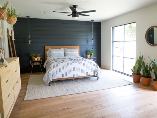 bold color, shiplap, painted accent wall